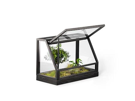 Växthus Mini Svart