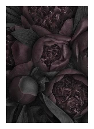 Poster No 1 Heartbeats